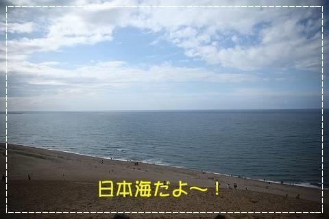 ブログIMG_5083-s-20181020こぴ.JPG