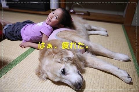 ブログIMG_5124-s-20181023こぴ.JPG