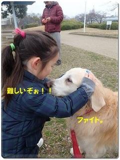 ブログP3040013-s-20180310こぴ.JPG