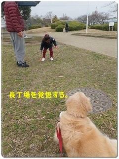 ブログP3040026-s-20180310こぴ.JPG