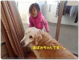 ブログP3110053-s-20180313こぴ.JPG