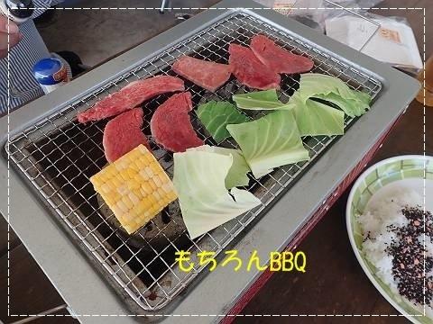 ブログP4270028-s-20180430こぴ.JPG