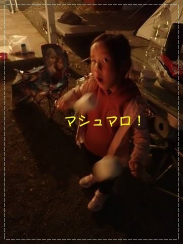 ブログP4280134-s-20180502こぴ.JPG