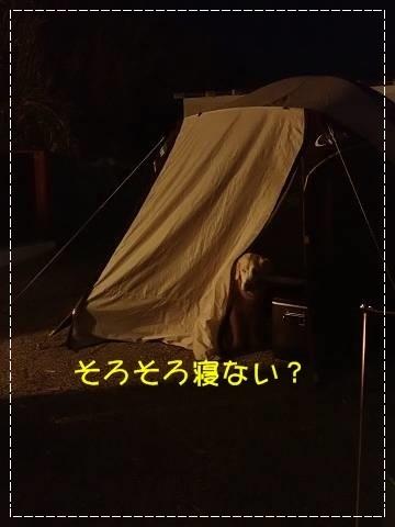ブログP4280149-s-20180502こぴ.JPG