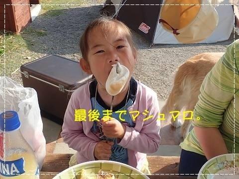 ブログP4300179-s-20180502こぴ.JPG