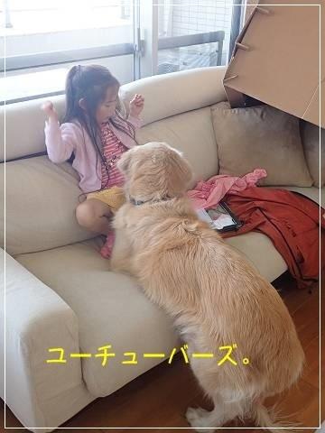 ブログP5050001-s-20180510こぴ.JPG