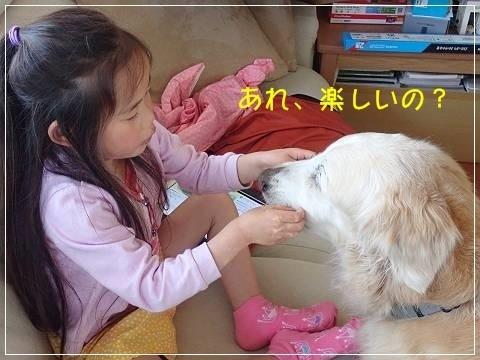ブログP5050008-s-20180510こぴ.JPG