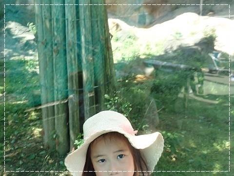 ブログP5050048-s-20180505こぴ.JPG