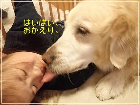 ブログP5100012-s-20180511こぴ.JPG