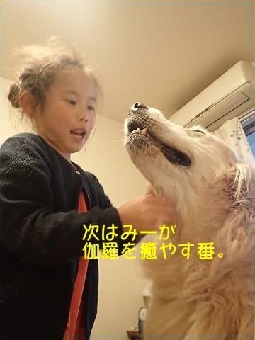 ブログP5100015-s-20180511こぴ.JPG