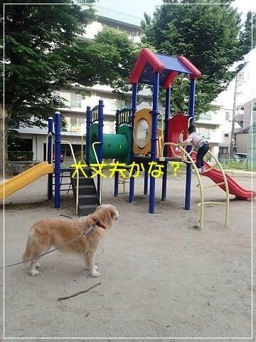 ブログP5120024-s-20180515こぴ.JPG