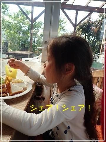 ブログP5120072-s-20180514こぴ.JPG