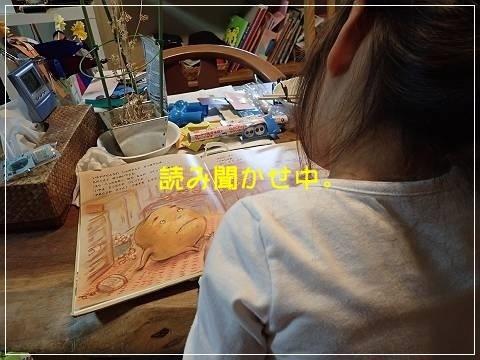 ブログP5160003-s-20180517こぴ.JPG