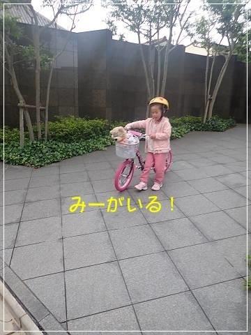 ブログP5170002-s-20180518こぴ.JPG