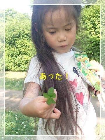 ブログP5270036-s-20180604こぴ.JPG