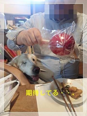 ブログP5310010-s-20180601こぴ.JPG