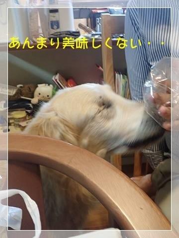 ブログP5310016-s-20180601こぴ.JPG