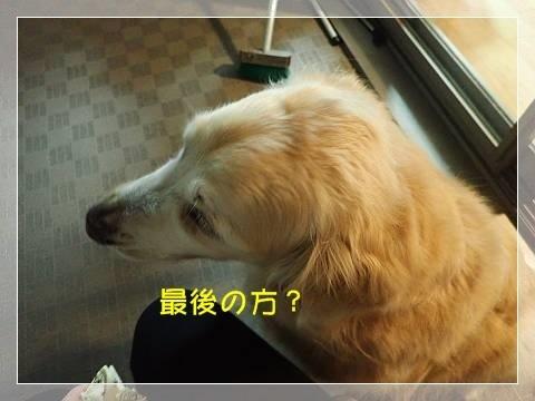 ブログP6050043-s-20180606こぴ.JPG