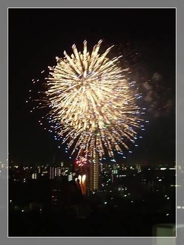 ブログP6050065-s-20180606こぴ.JPG