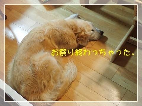 ブログP6050068-s-20180606こぴ.JPG