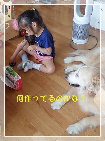 ブログP6090011-s-20180609こぴ.JPG