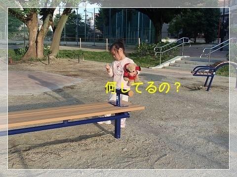 ブログP6140012-s-20180615こぴ.JPG