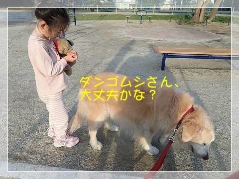 ブログP6140017-s-20180615こぴ.JPG