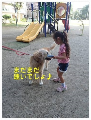 ブログP6160021-s-20180619こぴ.JPG