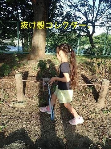 ブログP7140084-s-20180714こぴ.JPG