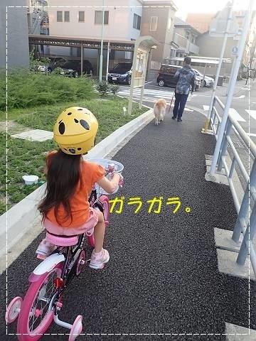 ブログP7150005-s-20180717こぴ.JPG