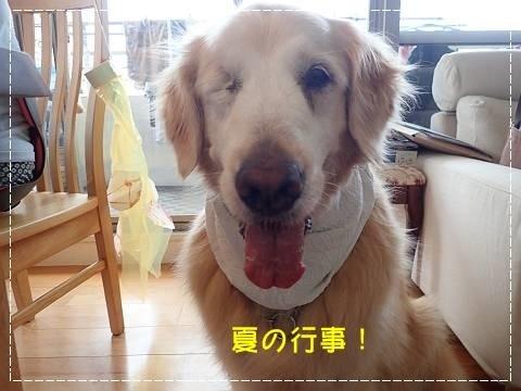 ブログP7190006-s-20180726こぴ.JPG