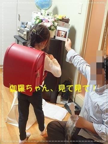 ブログPB090018-s-20181110こぴ.JPG