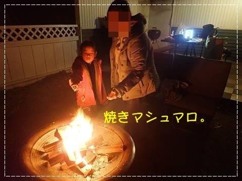 ブログPC010113-s-20181209こぴ.JPG